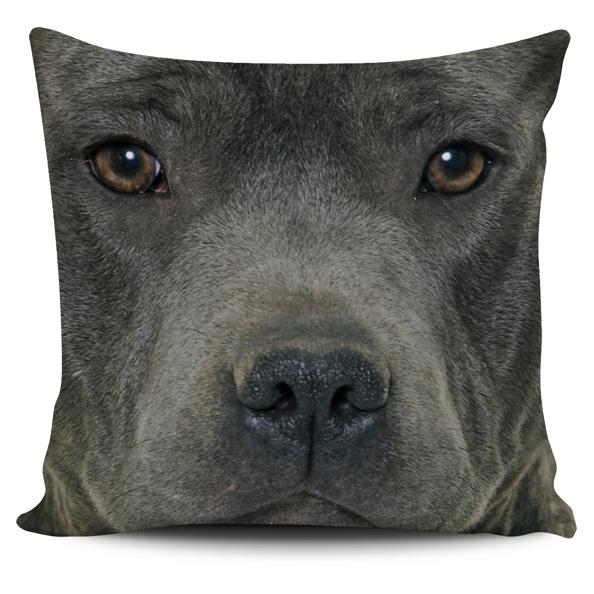 Pit Bull Face Pillow Cover