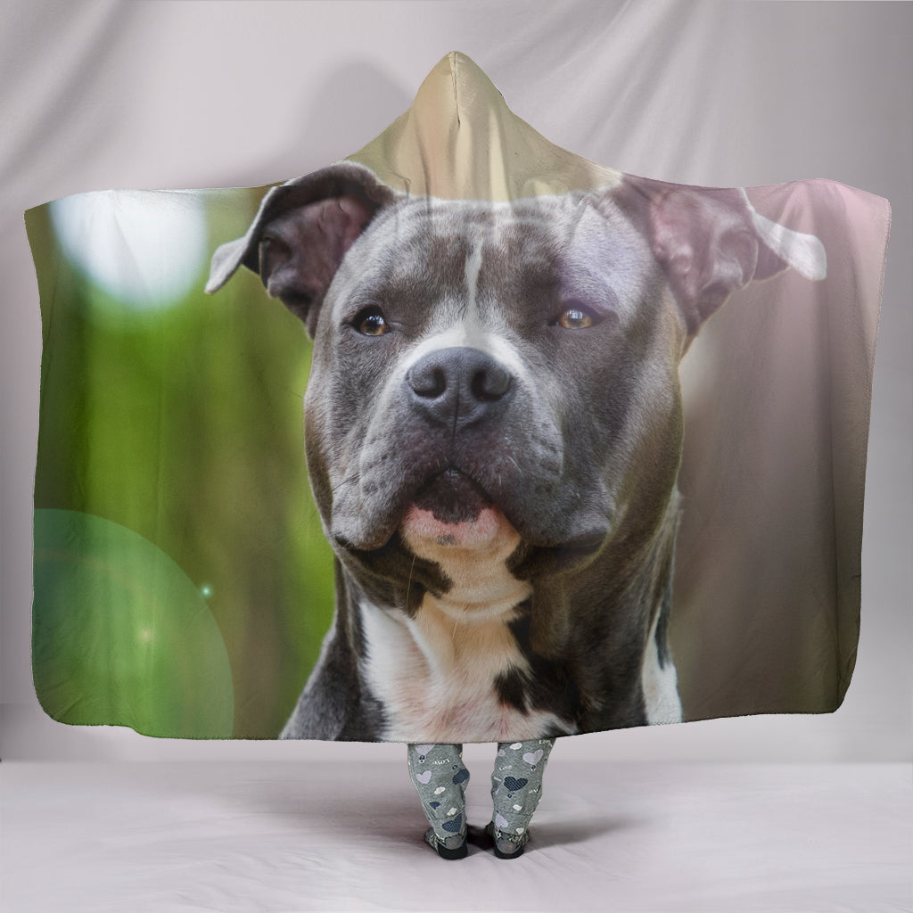 Attentive Pit Bull Hooded Blanket