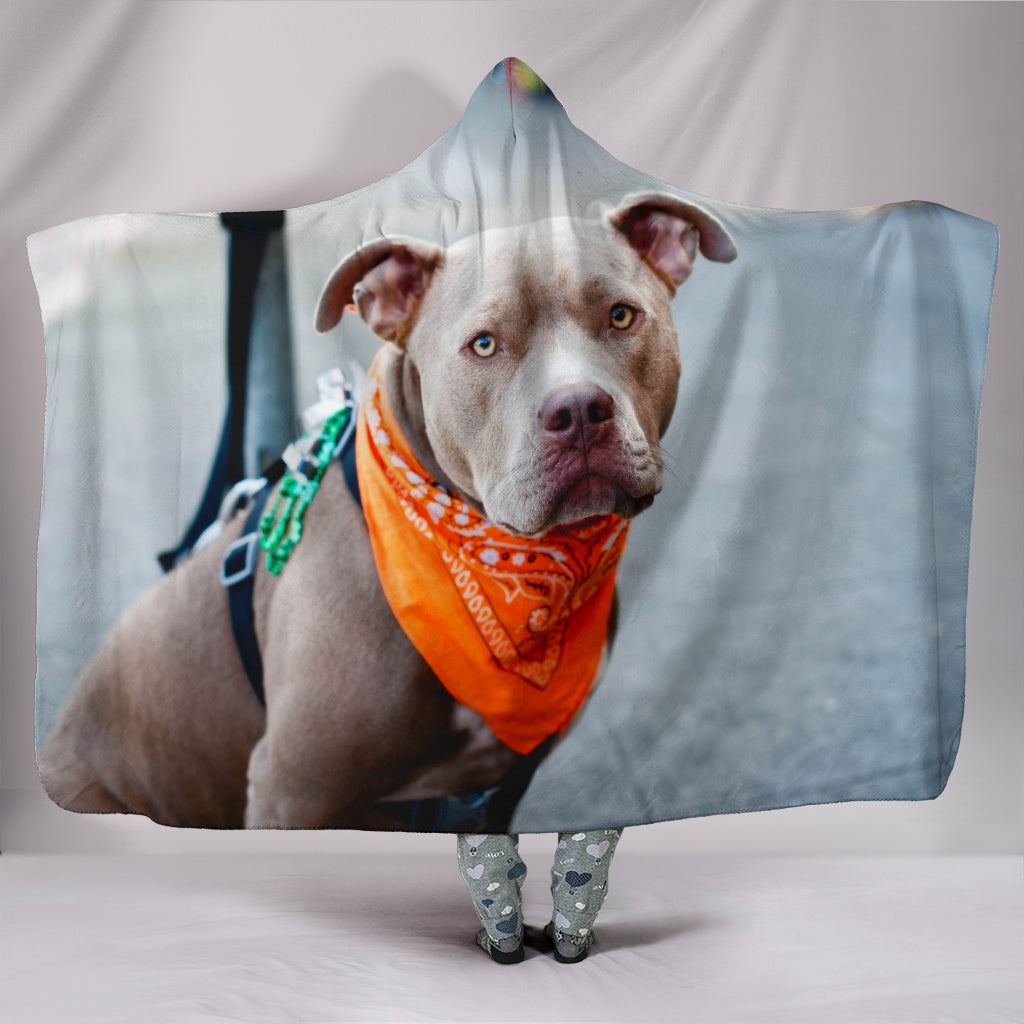 Pit Bull Waiting Hooded Blanket - KiwiLou