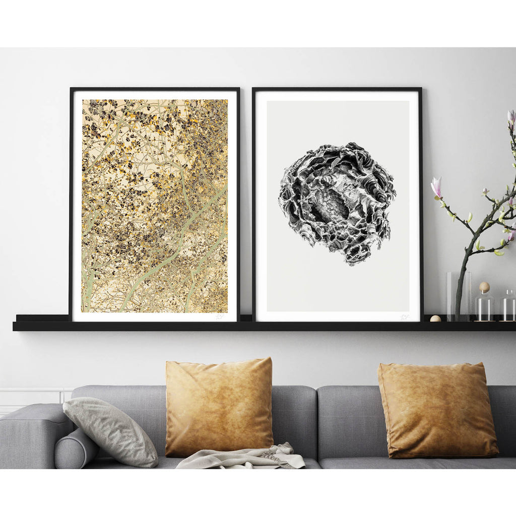 what Phil sees limited edition typography and photography art prints for your home and gallery wall this print is called natural nest