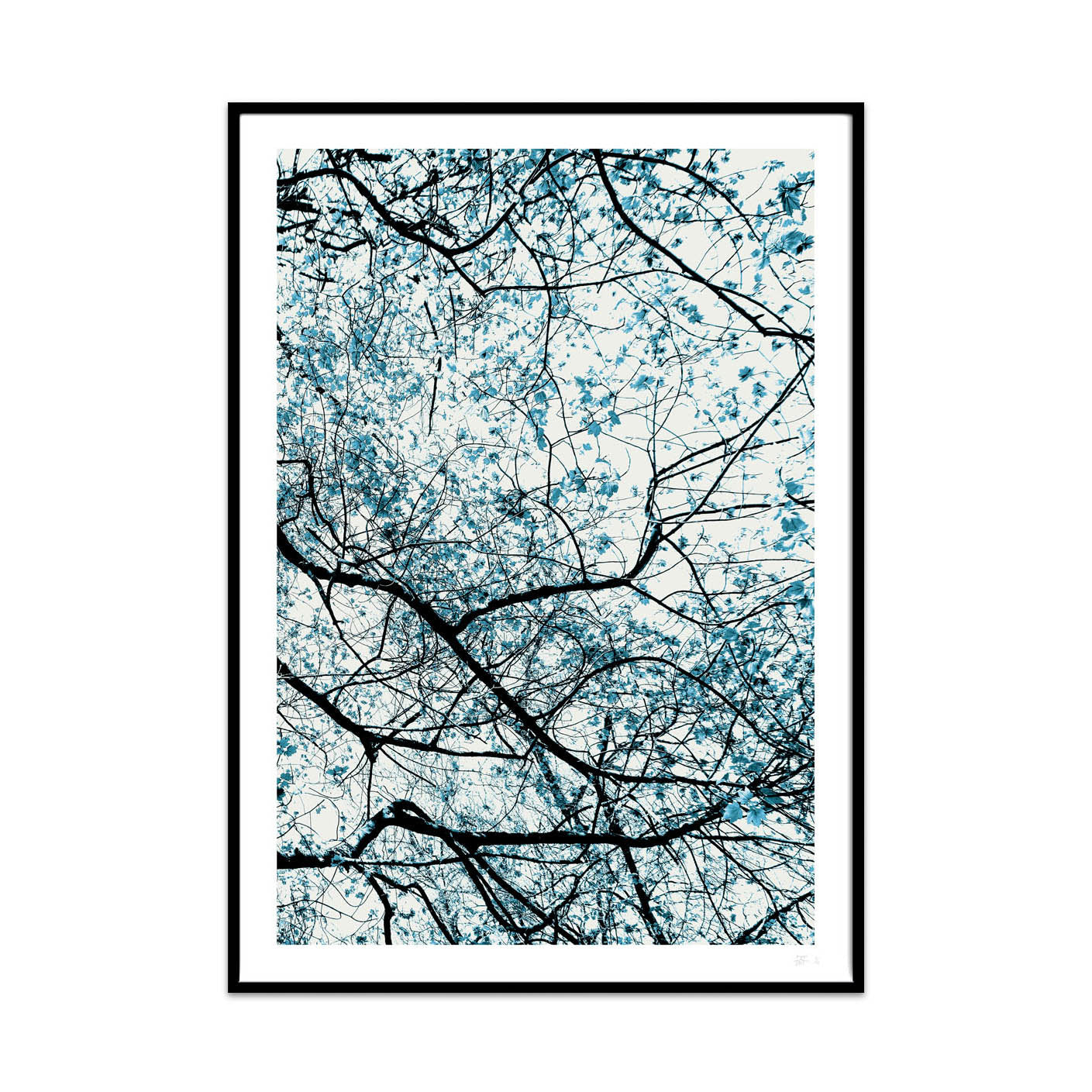 what Phil sees limited edition typography and photography art prints for your home and gallery wall this print is called natural network.