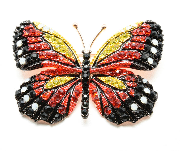 the beautiful butterfly brooch