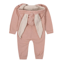 Spring Autumn Baby Rompers Cute Cartoon Rabbit Infant Girl Boy Jumpers Kids Baby Outfits Clothes-Shop Here Pravalia