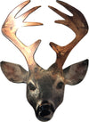 Buck, wall art by d'ears, made in the USA, 18 gauge steel