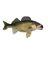 d'ears Walleye Pin