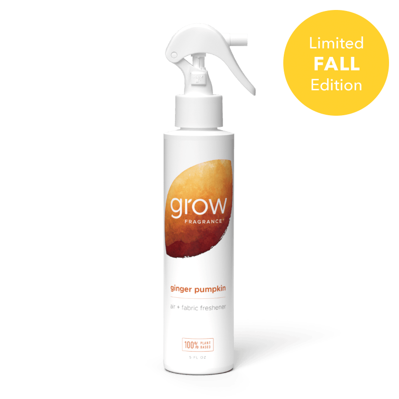 Ginger Pumpkin Air + Fabric Spray