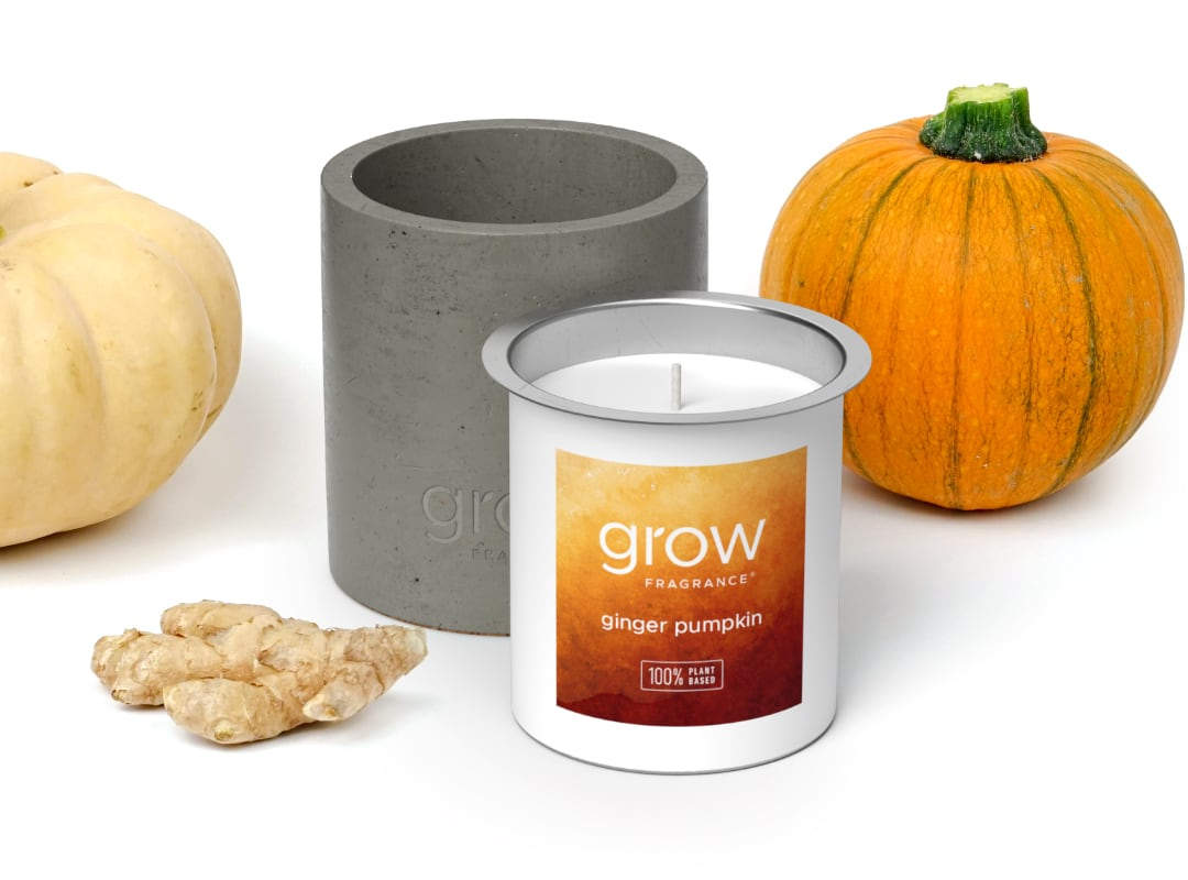 Ginger Pumpkin Candle - Ginger Pumpkin is a blend of fresh ginger, toasted pumpkin, fall spices & a touch of vanilla bean. 6.5 oz — 45-50 hour burn time