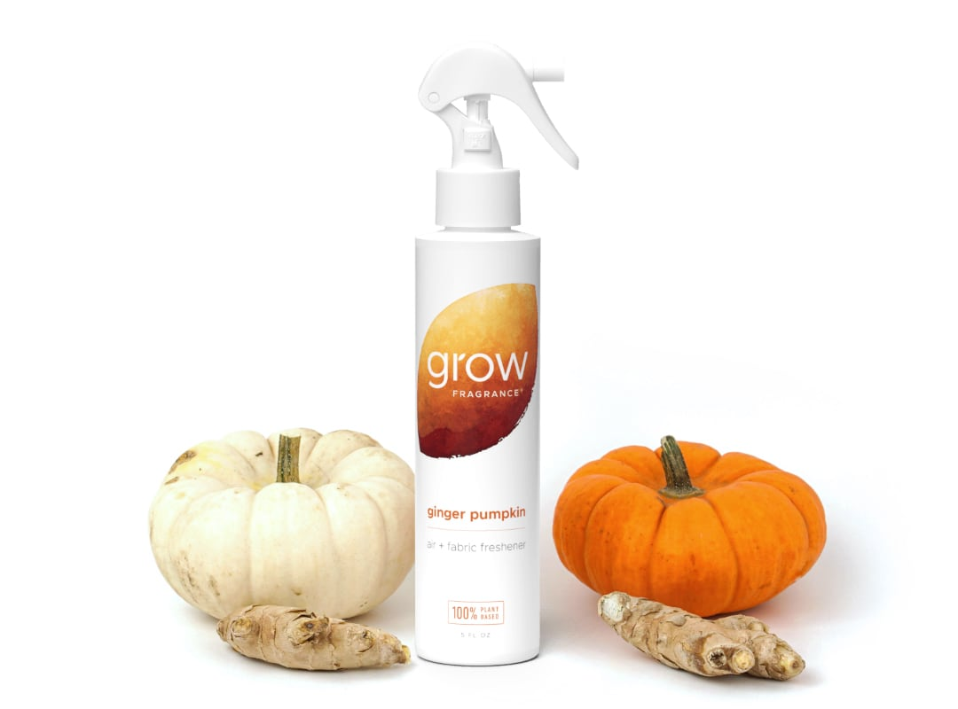 Ginger Pumpkin Air + Fabric Spray - Ginger Pumpkin is a blend of fresh ginger, toasted pumpkin, fall spices & a touch of vanilla bean.