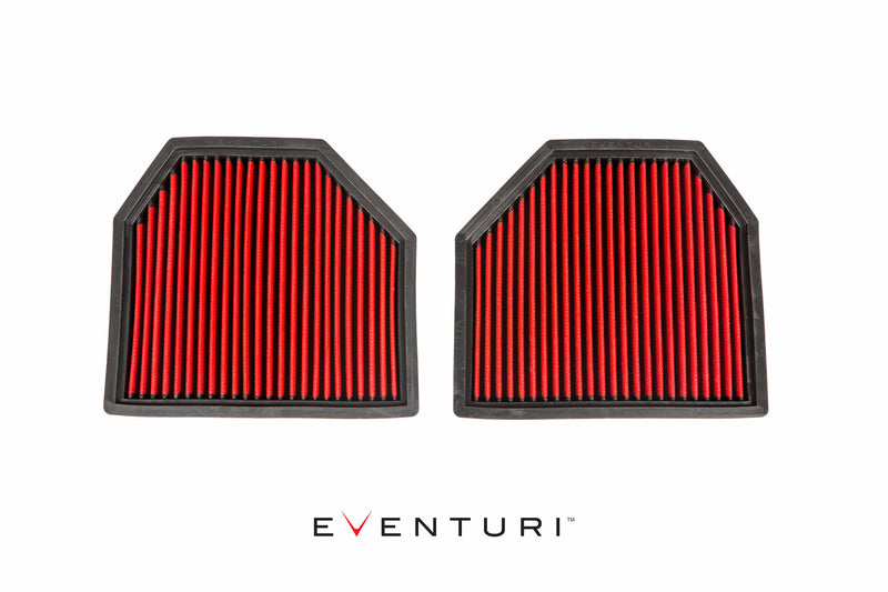 Eventuri Panel Filter Set of 2 for BMW F1X M5/M6
