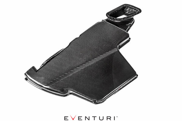 Eventuri Airbox Lid for BMW E9X M3