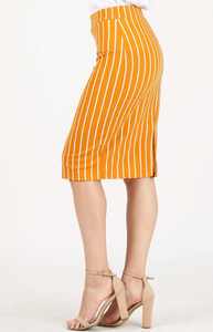 Plus Pencil Skirt ~ Melody