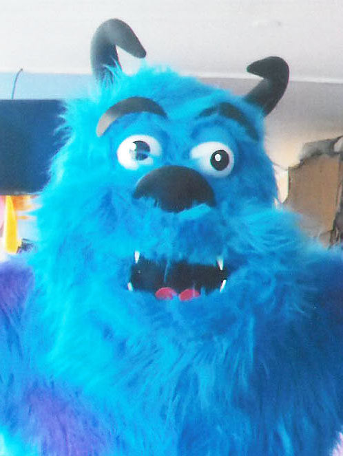 Monsters Inc Sully Mascot Costume Head Adult Costume/ HEAD ONLY