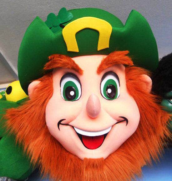 Leprechaun Head Mascot Costume Adult Costume