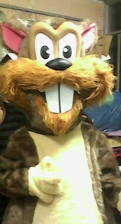 Beaver Mascot Costume Adult Beaver Costume For Sale
