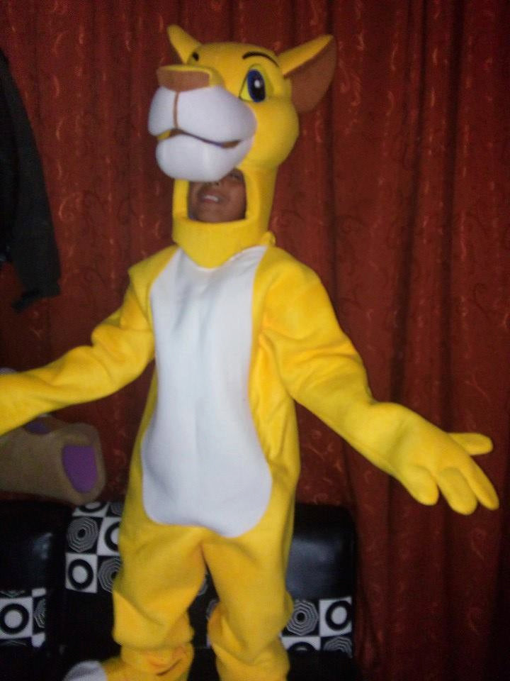 Lion Mascot Costume Adult Costume/ Open Face Mascot Costume