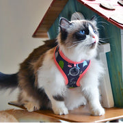 "Puss ""A"" Harness For Cats By Catspia"