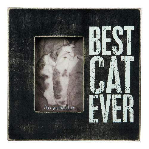 best cat ever frame