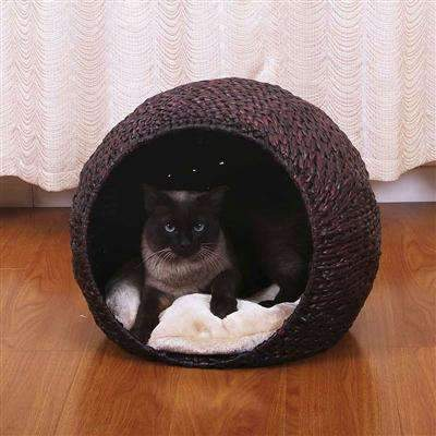 Cosmo Cat House