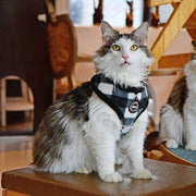 figaro harness vest for cats by Catspia