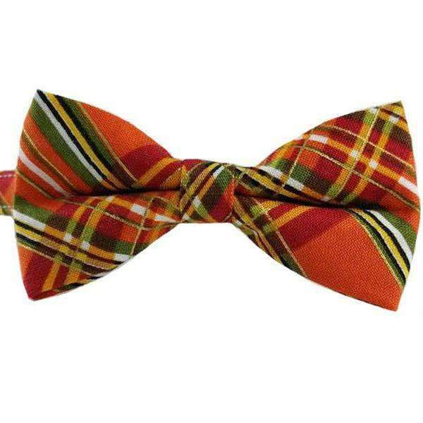 orange fall plaid breakaway safety cat bow tie cat collar