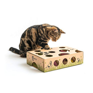 maze and puzzle feeder cat toy