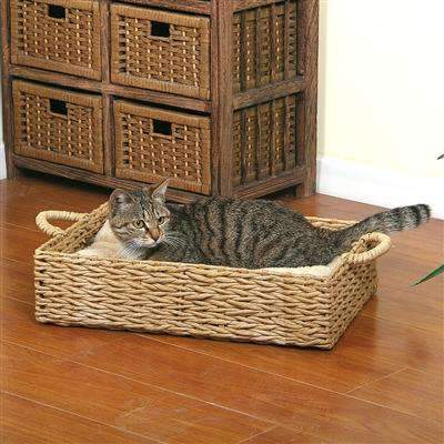 paper rectangle cat bed