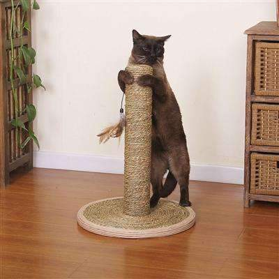 Seagrass post for cats with teaser toy