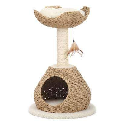 Walk-Up Cat House With Condo And Perch