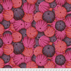 Kaffe Fassett Collective Sea Urchins Red Quilting Cotton