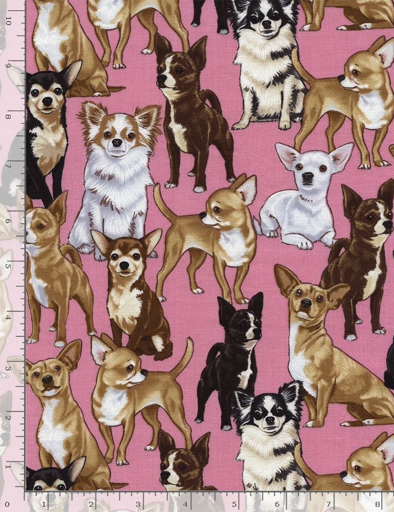 Timeless Treasures Pure Breeds Chihuahua - Pink