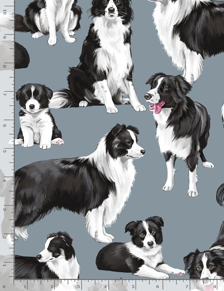 Timeless Treasures Pure Breeds Border Collies