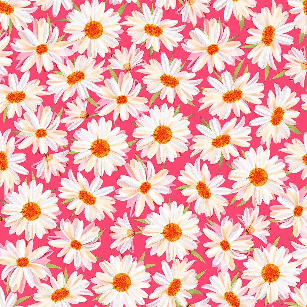 Quilting Treasures Daisy Meadow Daisies - Pink