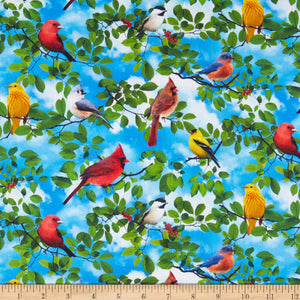 Timeless Treasures Quilt Of A Feather Birds Fabric