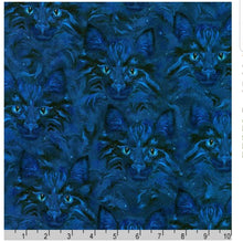 Robert Kaufman Be Pawsitive - Midnight