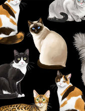 Load image into Gallery viewer, Timeless Treasures Crazy For Cats Realistic Cats