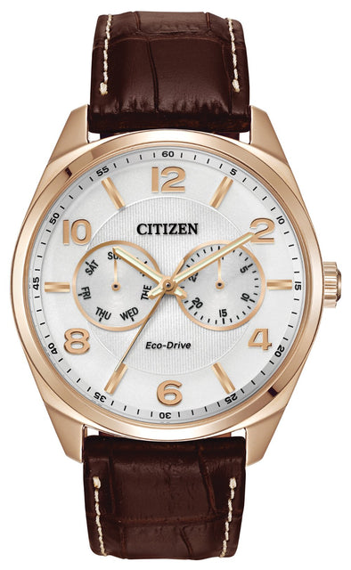 Citizen CORSO AO9023-01A Watch