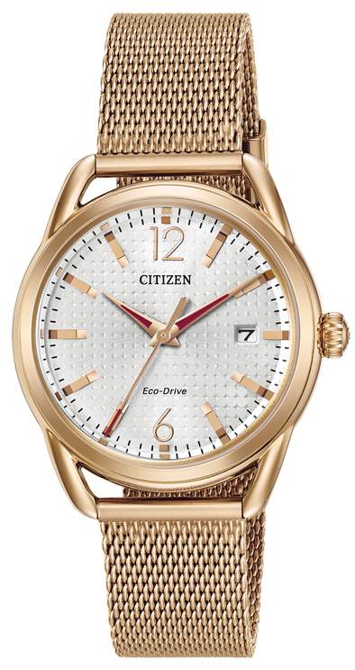 Citizen LTR - Long Term Relationship FE6083-72A Watch
