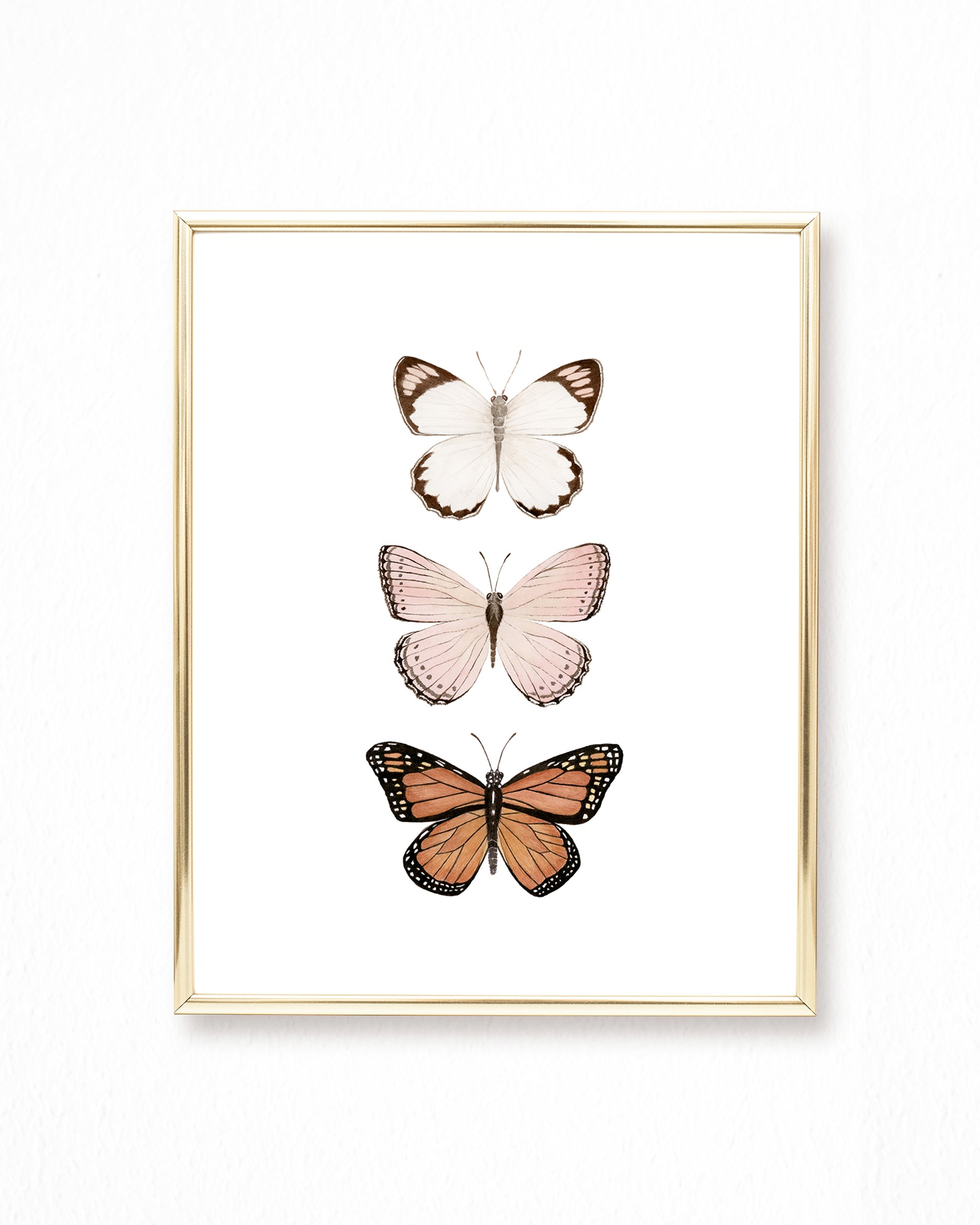 Butterfly Watercolor Painting Trio - Art Print