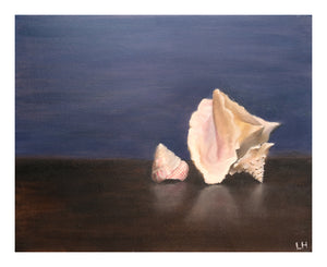 Shells Oil Painting - Canvas Art Print