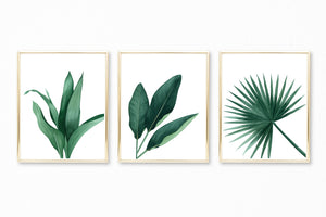 Watercolor Tropical Leaves Paintings II - Set of 3 Art Prints