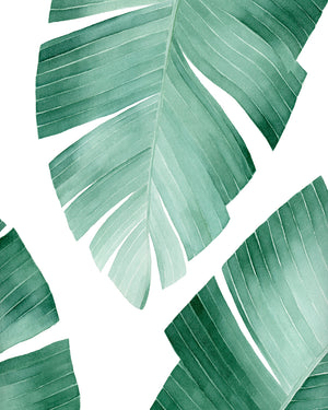 Tropical Banana Leaf Watercolor Painting - Art Print