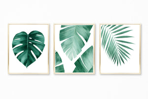 Watercolor Tropical Leaves Paintings - Set of 3 Art Prints