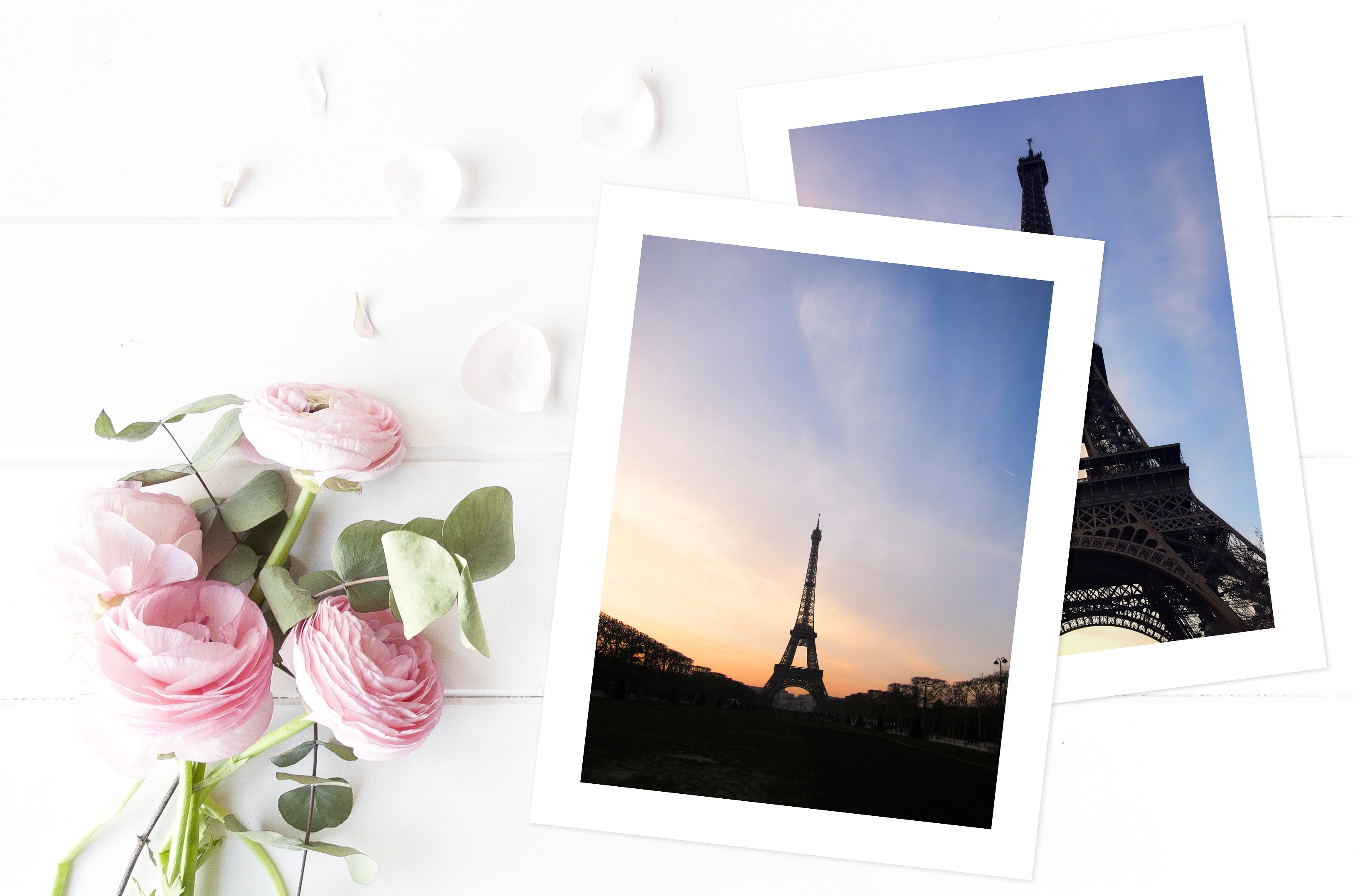 Paris Eiffel Tower Photography - 2 Art Prints