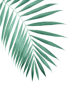 Tropical Palm Leaf Watercolor Painting - Art Print