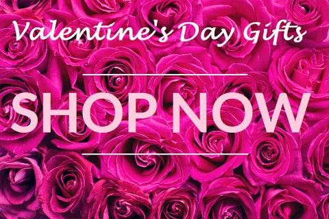 Buy Designer Valentine's Day Gift From Dolce & Gabbana, Prada, Michael Kors, and More Great Designers For Less - Designer Bags, Shoes, Pumps, Heels, Clutches, Hobos, Purses, Jewelry, Rings, Bracelets, Necklaces and More