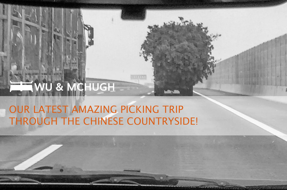 OUR LATEST AMAZING PICKING TRIP THROUGH THE CHINESE COUNTRYSIDE!