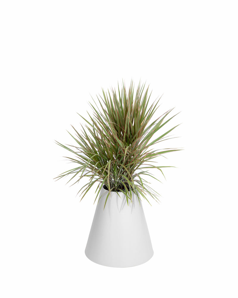 Cone Planter - PIECES by An Aesthetic Pursuit