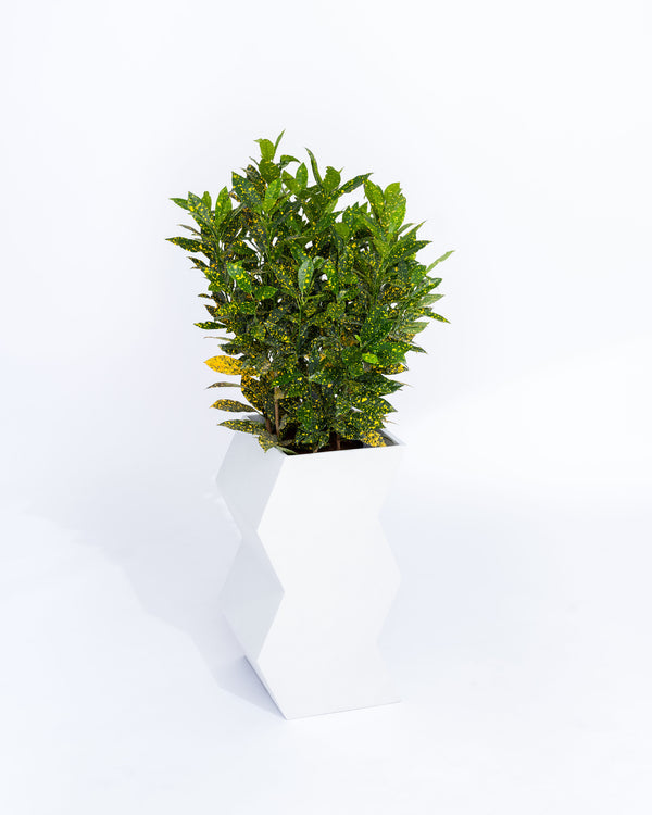 Zig-Zag Planter - PIECES by An Aesthetic Pursuit