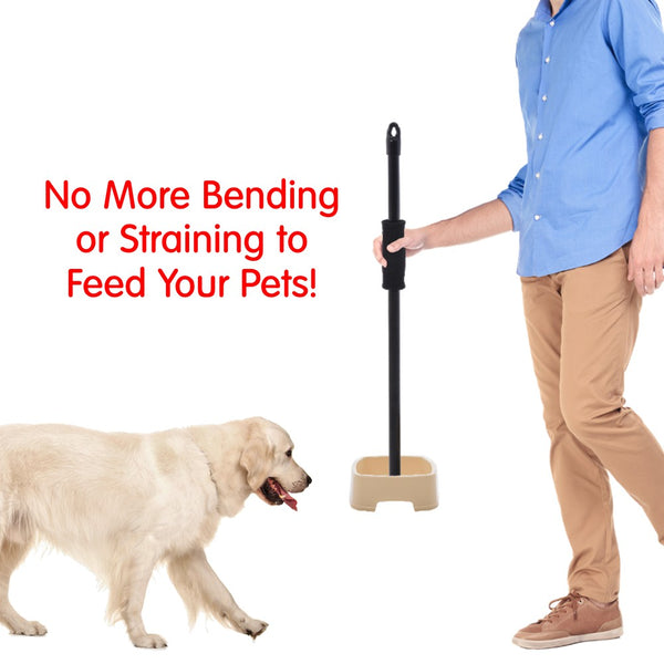 easy to feed pet bowl no more bending