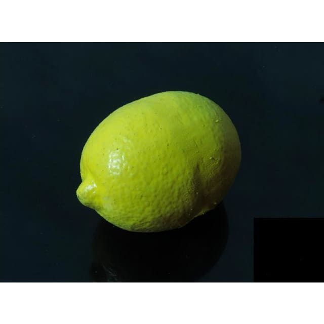 Fake Rubber Lemon